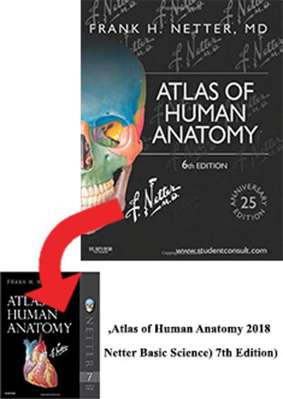 Atlas of Human Anatomy netter  (۶th Edition)چاپ تمام لطفا خرید نفرمایید